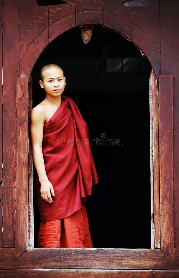 детеныши студента myanmar монаха стоковые фото