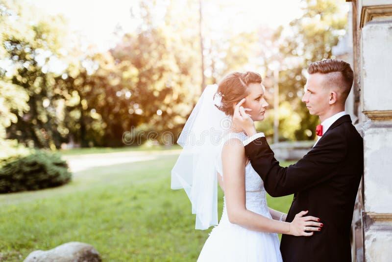 Детеныши холят нежно касаться щеке невест стоковое фото rf