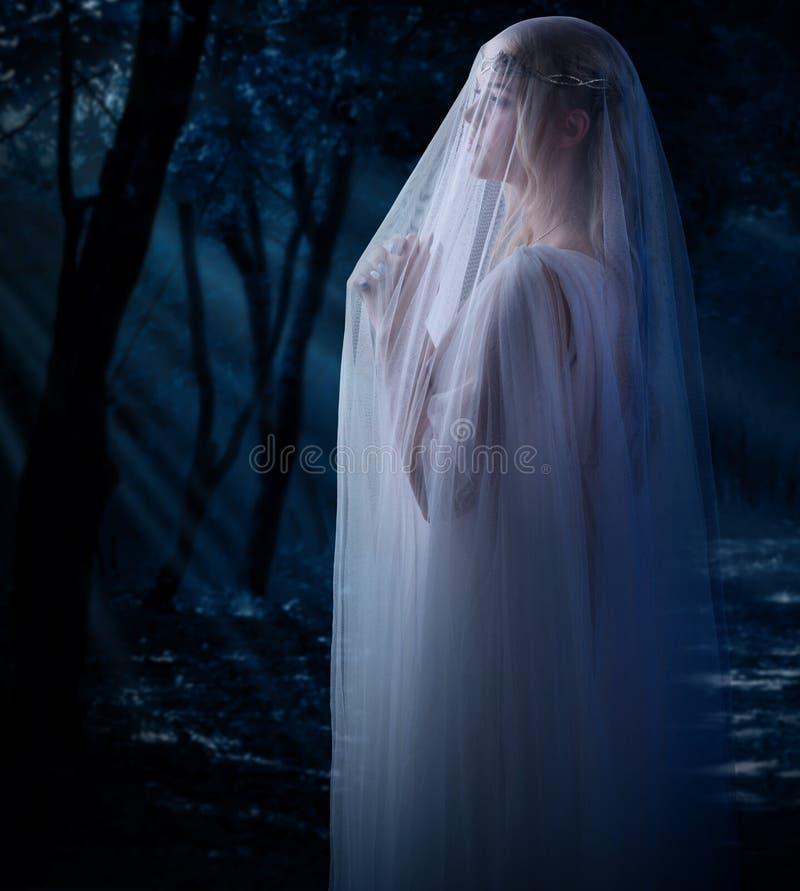 Детеныши elven девушка стоковые фотографии rf