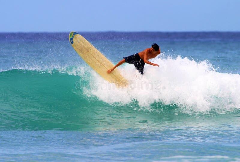 детеныши waikiki серфера gavin пляжа занимаясь серфингом стоковое изображение