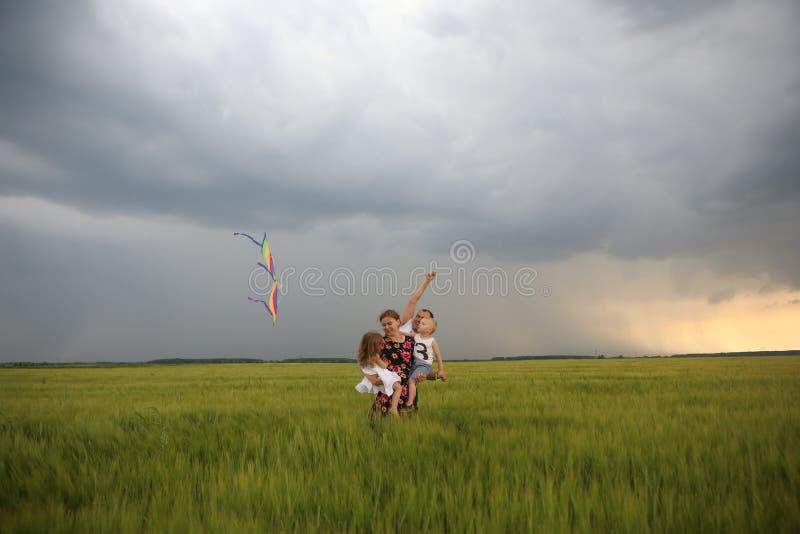 Дети ветра поля змея летания утехи семьи стоковые изображения