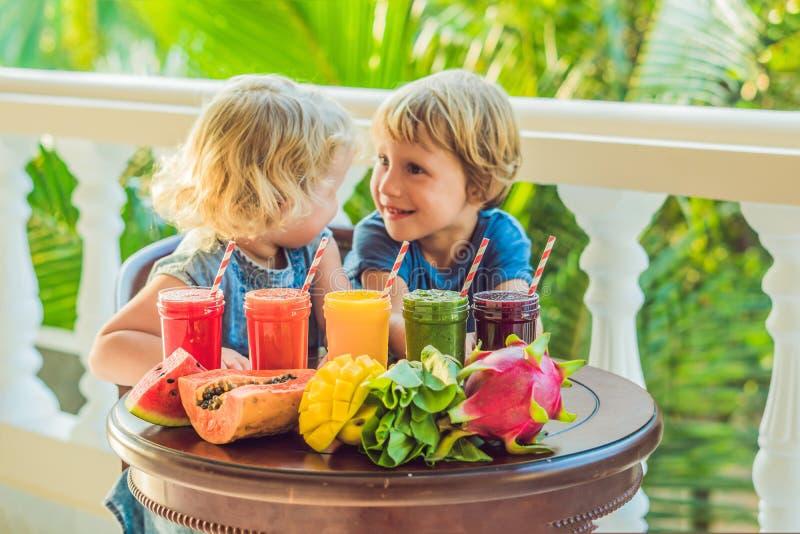 Дети выпивают красочные здоровые smoothies Арбуз, папапайя, манго, шпинат и дракон приносить Smoothies, соки, напитки, dri стоковая фотография