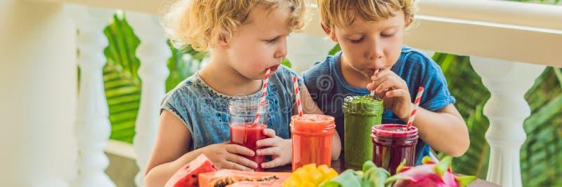 Дети выпивают красочные здоровые smoothies Арбуз, папапайя, манго, шпинат и дракон приносить Smoothies, соки, напитки, dri стоковые фотографии rf