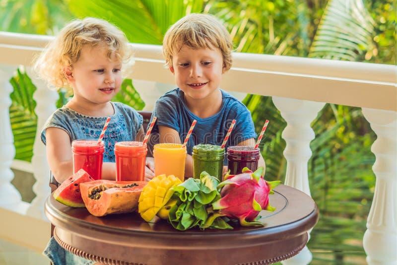 Дети выпивают красочные здоровые smoothies Арбуз, папапайя, манго, шпинат и дракон приносить Smoothies, соки стоковая фотография rf