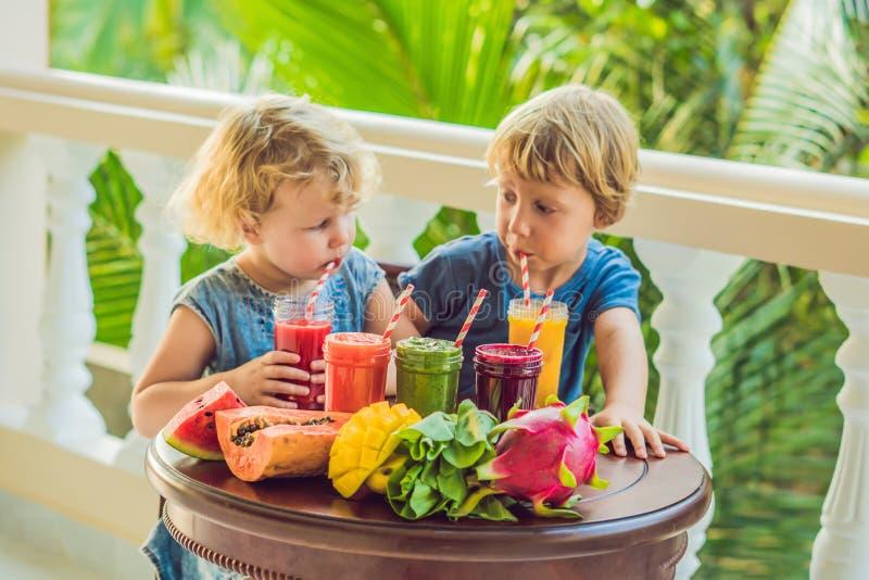 Дети выпивают красочные здоровые smoothies Арбуз, папапайя, манго, шпинат и дракон приносить Smoothies, соки стоковое фото rf