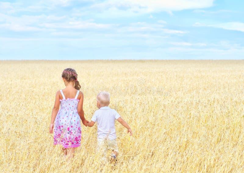 Дети в поле пшеницы стоковое изображение rf