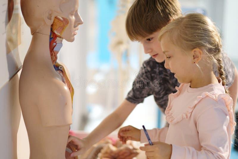 Дети в центре занимательной науки стоковое фото