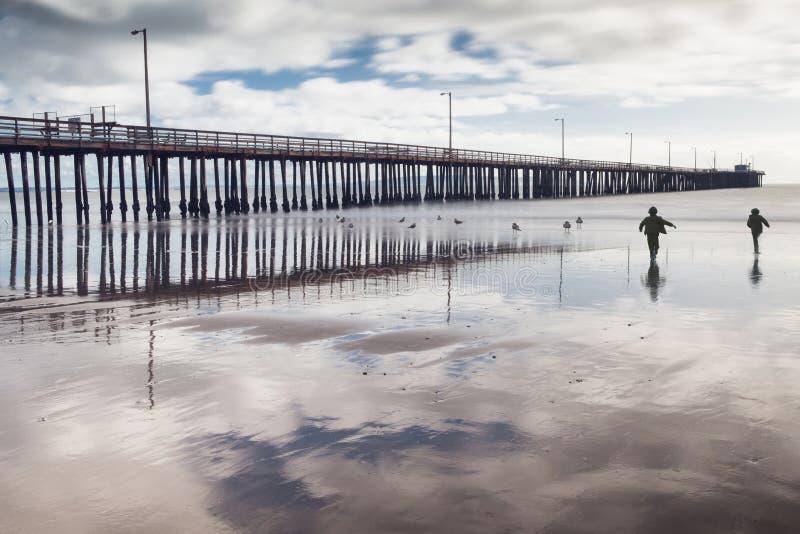 Дети гоня морские птиц на пляже стоковые фото