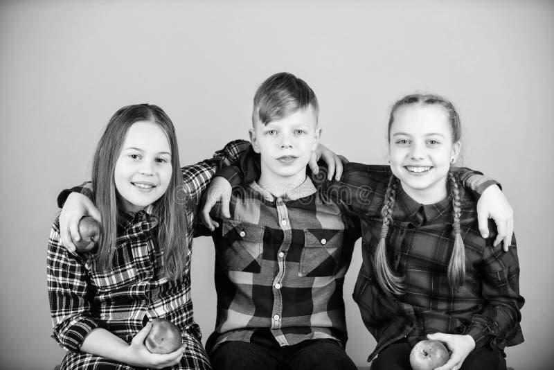 Дети друзей обнимают один другого o Мальчик и подруги в подобных checkered одеждах едят яблоко Подросток с стоковые изображения rf