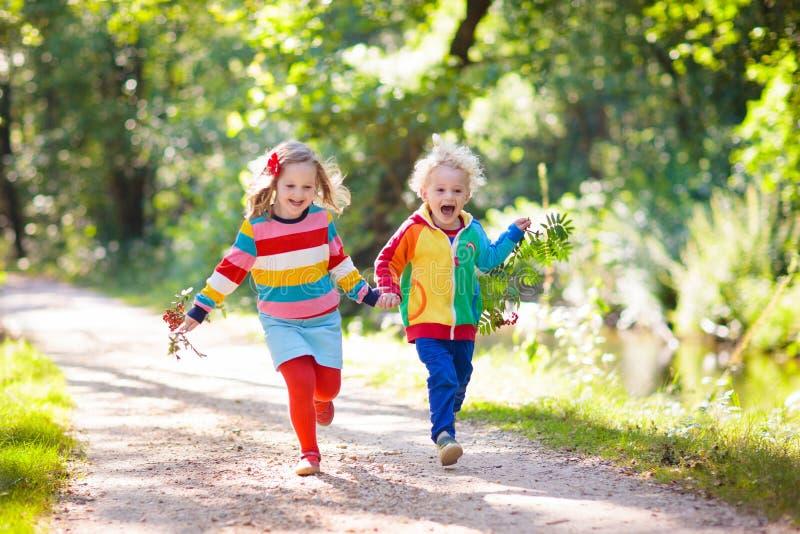 Дети играют в парке осени стоковое изображение