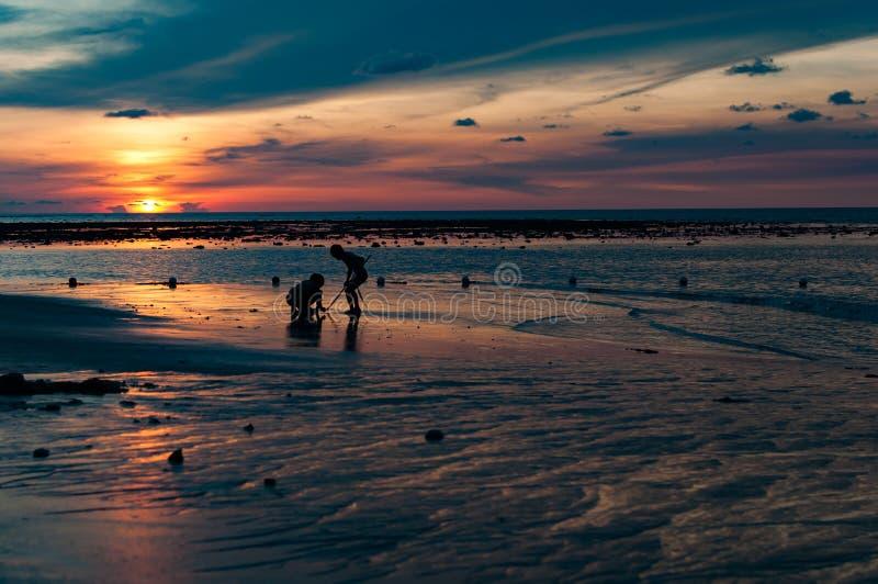 Дети играя на пляже на времени захода солнца стоковые изображения rf