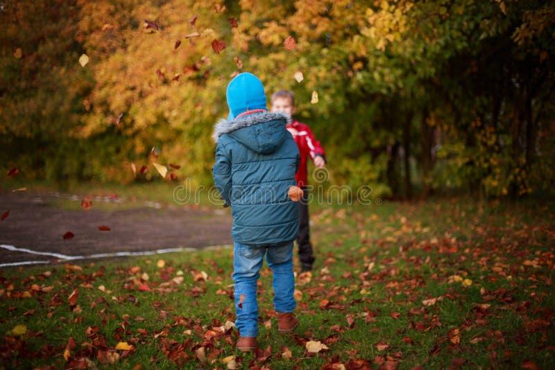 Дети играя с листьями в парке стоковые фотографии rf
