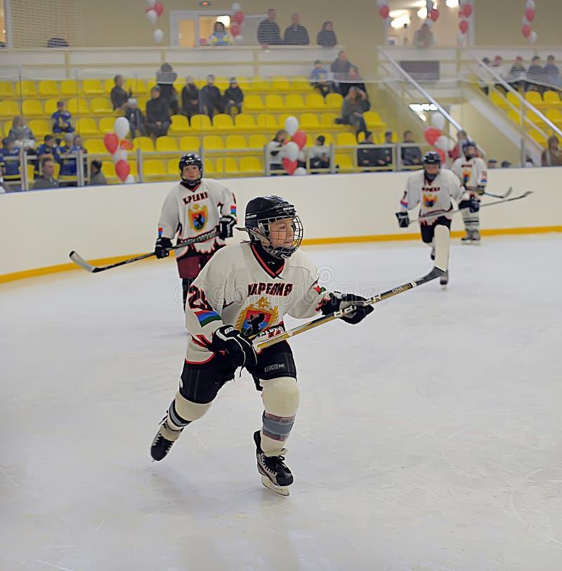 Дети играя хоккей стоковая фотография