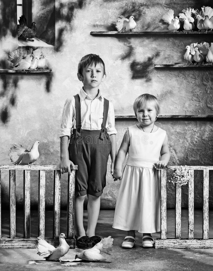 Дети и голуби очарование девушки красивейшего черного брюнет классическое смотря белизну представления портрета фото вы Девушка и стоковые изображения rf
