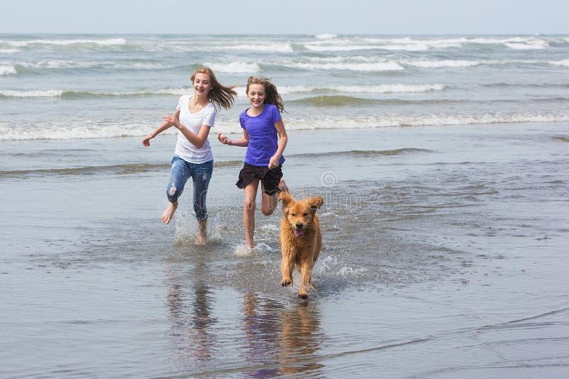 Дети и собака бежать на пляже стоковая фотография rf