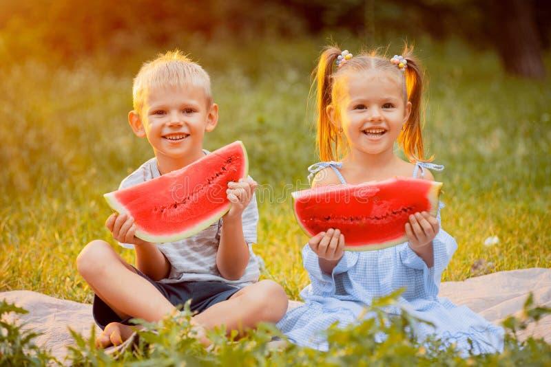 Дети на лужайке с кусками арбуза стоковые изображения rf