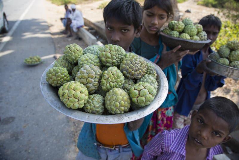 Дети продавая яблоки заварного крема обочиной стоковые фото