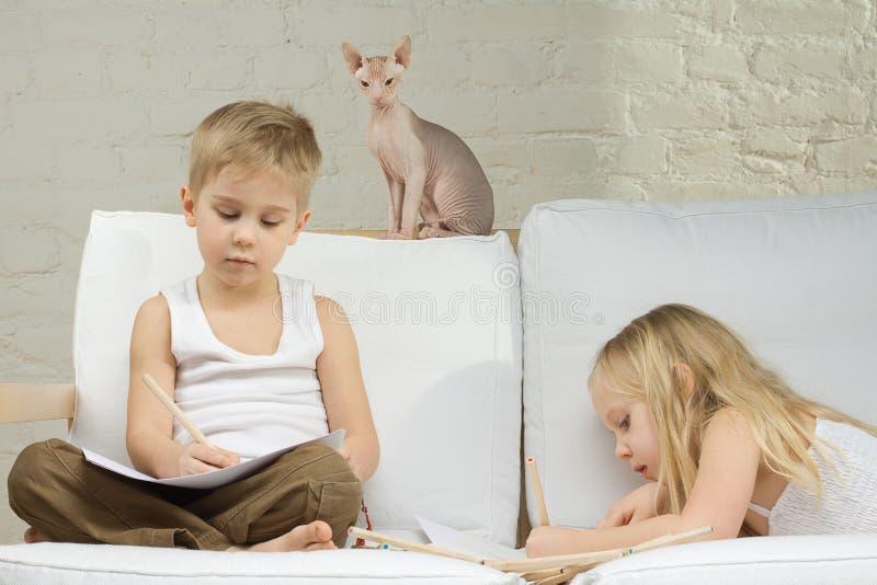 дети самонаводят котенок стоковая фотография