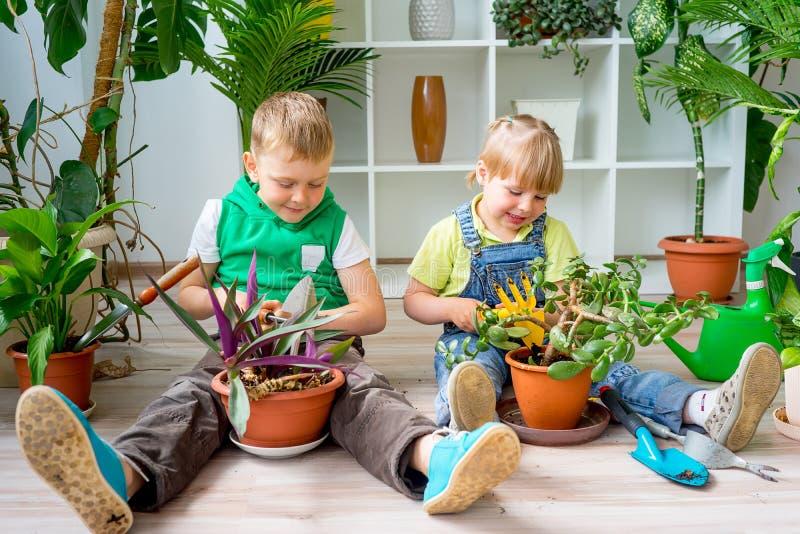 Дети садовничая в парнике стоковая фотография rf