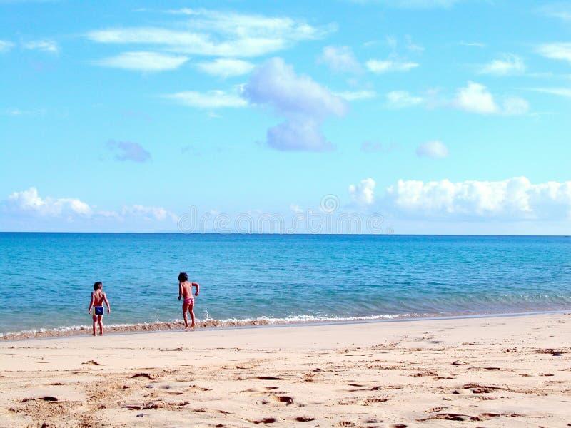 Download дети стоковое фото. изображение насчитывающей ребенок, тропическо - 75496