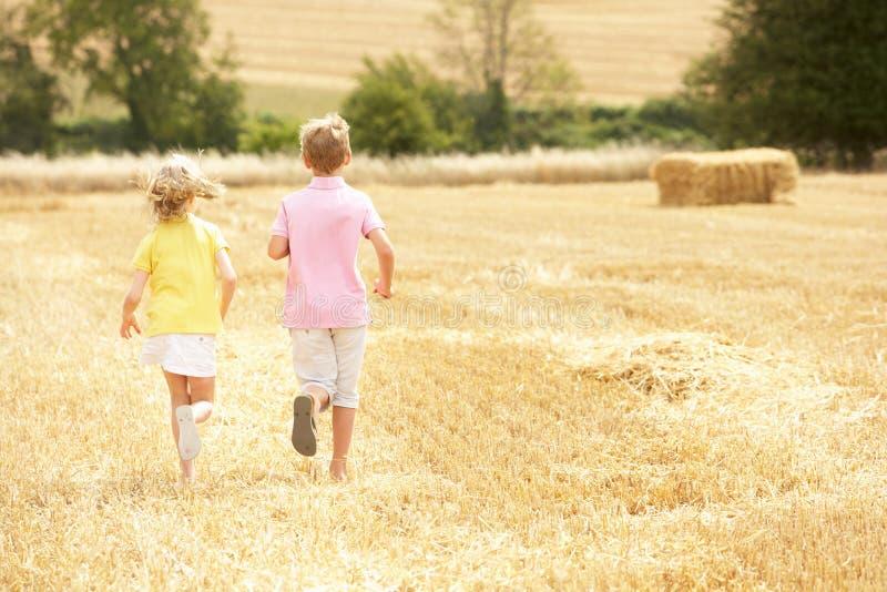 дети field сжатое идущее лето стоковое изображение rf