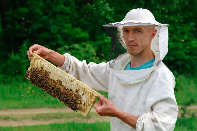 Деятельность Beekeeper собирает мед Beekeeper держа сот полный пчел Концепция пчеловодства стоковое фото rf