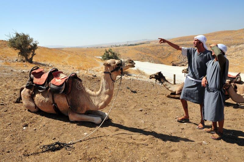 Деятельности при езды и пустыни верблюда в пустыне Израиле Judean стоковая фотография