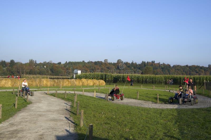 Деятельность при фермы заплаты тыквы хеллоуина стоковые изображения