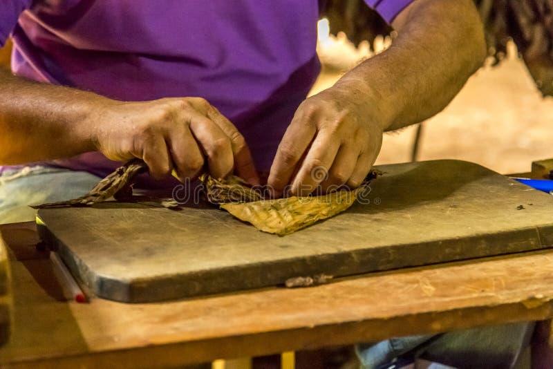 Делать сигары в Vinales, Куба #6/21 стоковые фотографии rf