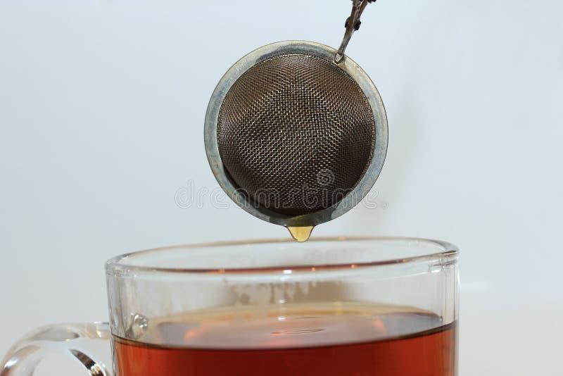 Делать чай с infuser стоковые изображения