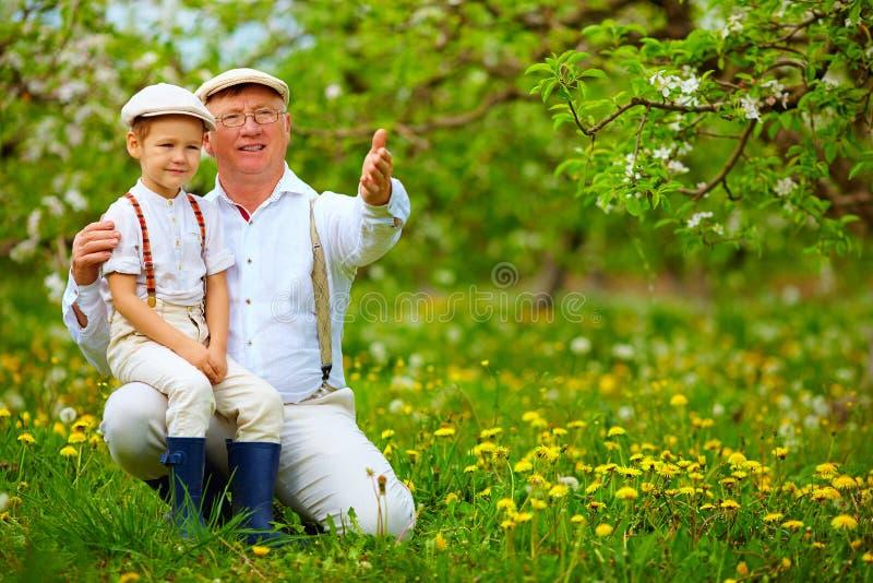 Дед деля опыт с садом внука весной стоковые изображения