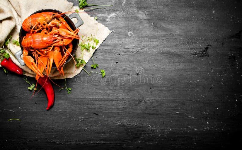 Деликатесы еды Кипеть ракы с травами и пряными перцами стоковое изображение