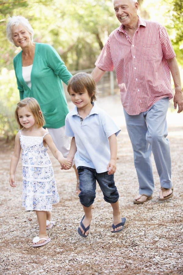 Деды на прогулке страны с внуками стоковая фотография