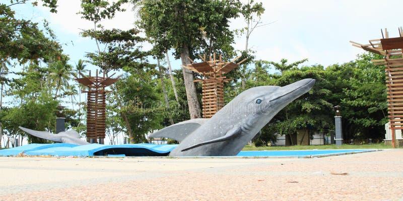 Дельфин в Waisai стоковое фото