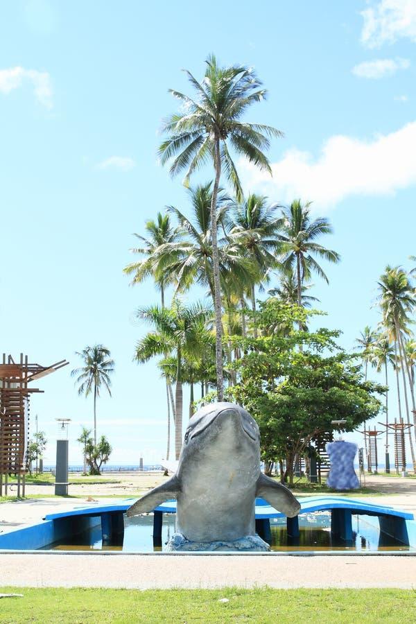Дельфин в Waisai стоковые изображения