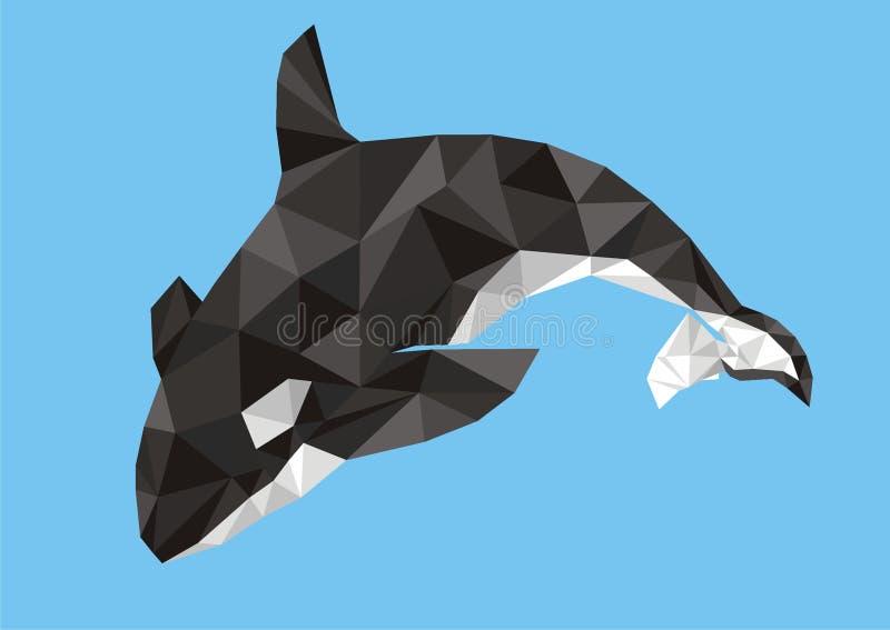 Дельфин-касатка скача вне от воды (косатки Orcinus) стоковые фотографии rf