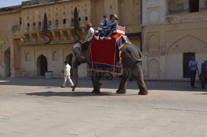 ДЖАЙПУР, ИНДИЯ - туристы на слоне едут в янтарном форте стоковое изображение rf