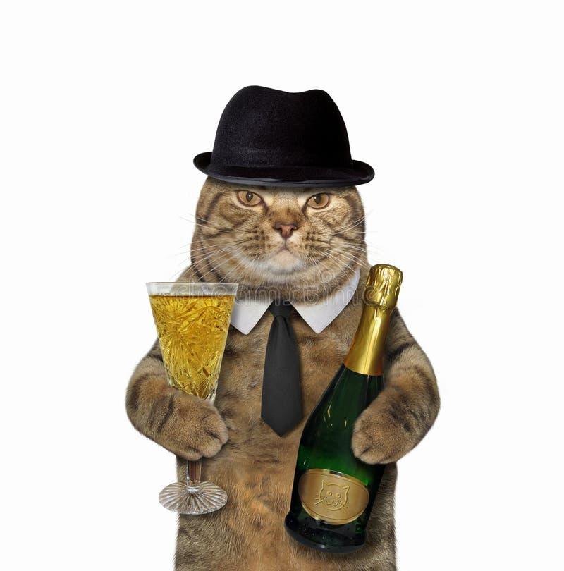 Джентльмен кота с бокалом вина стоковое фото