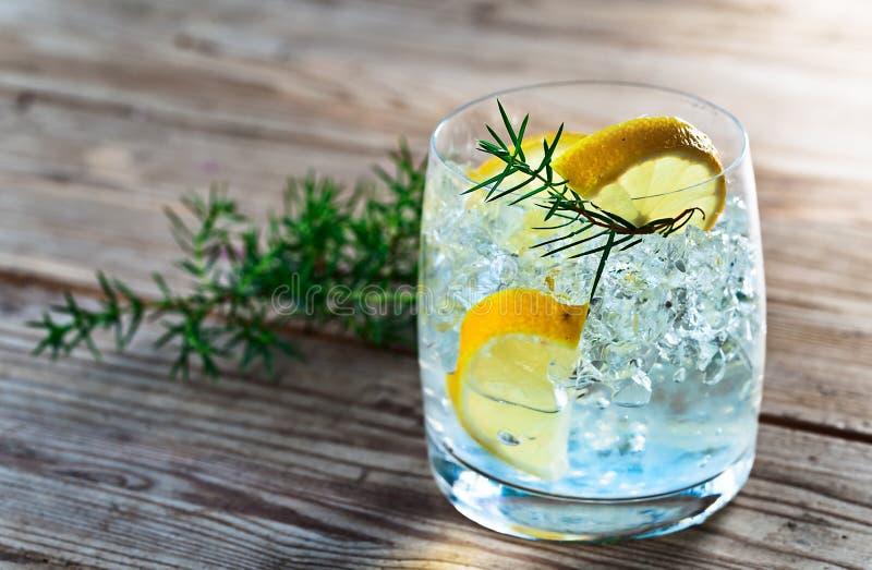 Джин с лимоном и ветвью можжевельника стоковые фотографии rf