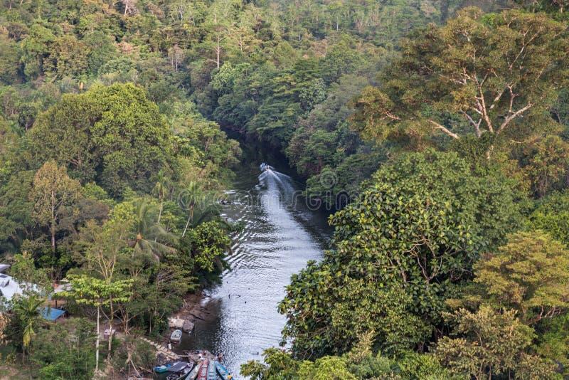 Джунгли вида с воздуха окружая реку Merlinau на Mulu национальном p стоковая фотография