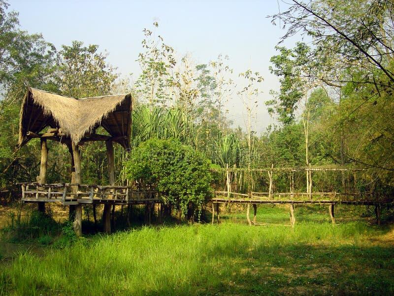 джунгли коттеджа тайские стоковая фотография
