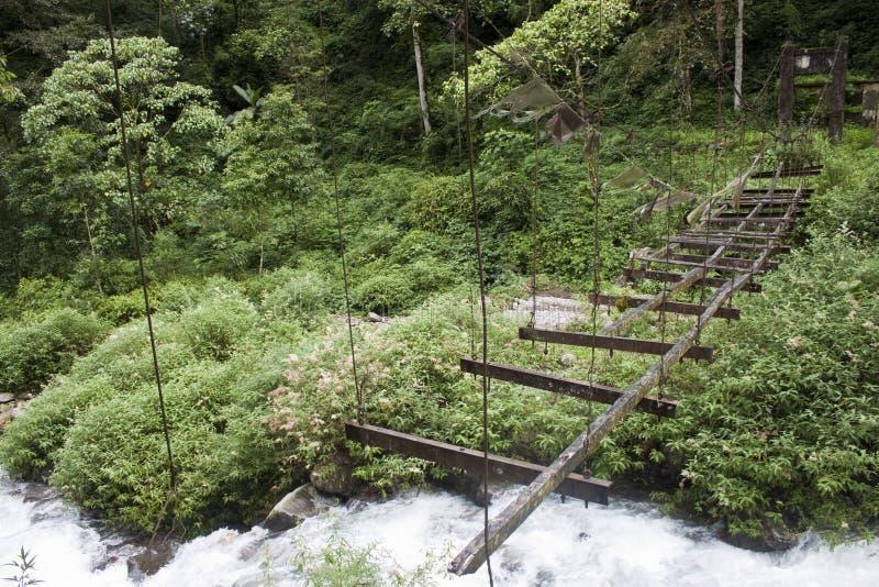 джунгли разрушенные мостом стоковые фотографии rf