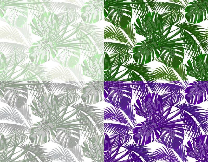 Джунгли Сочные листья тропических ладоней, извергов, столетников Комплект Безшовный в других цветах белизна изолированная предпос иллюстрация вектора