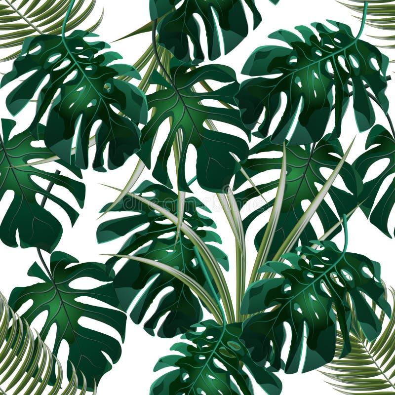 Джунгли Зеленые чащи тропических листьев и monstera ладони флористическая картина безшовная белизна изолированная предпосылкой иллюстрация штока