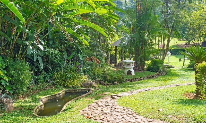 Джунгли на парке стоковое изображение