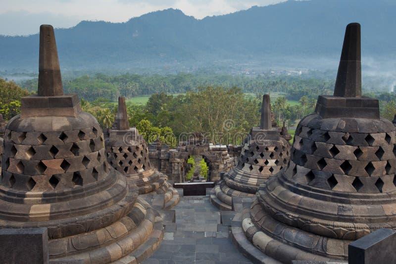 Джунгли от вершины виска Borobudur стоковое фото rf