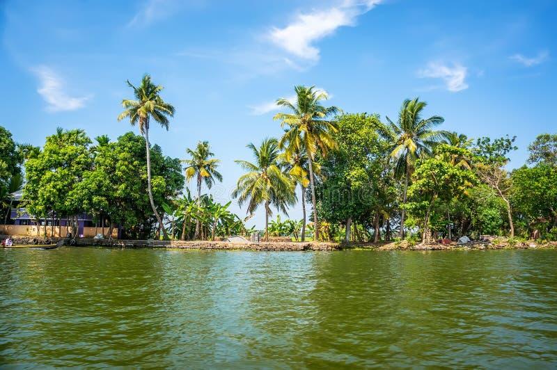 Джунгли подпоров Кералы - цепь brackish лагун стоковое изображение rf