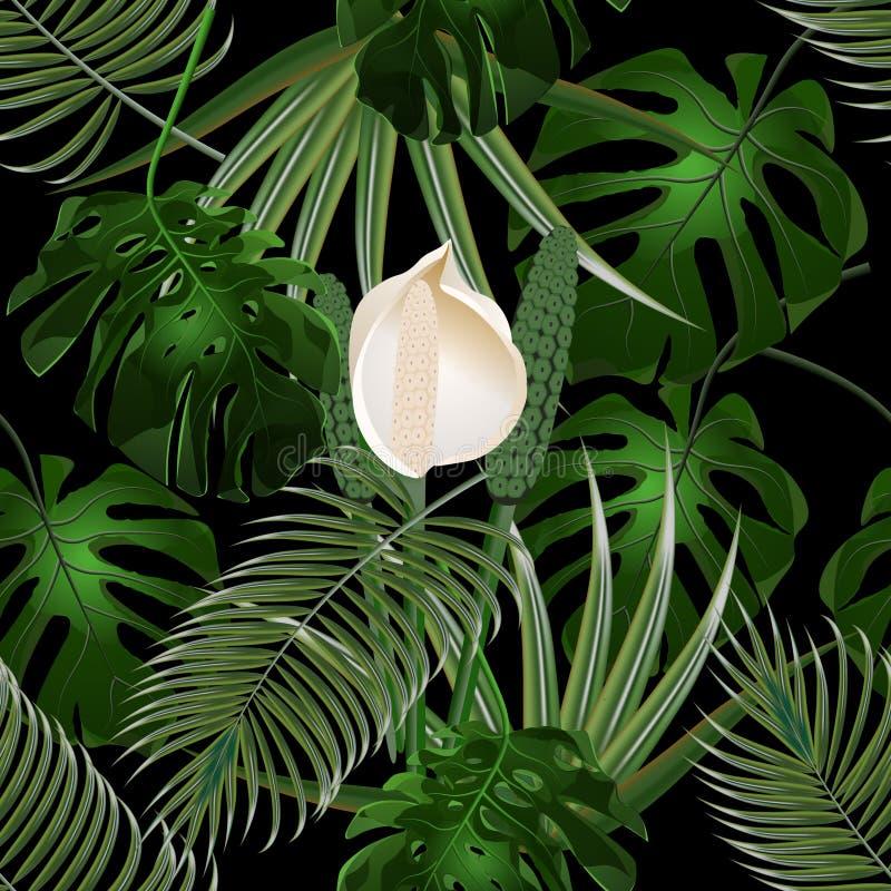 Джунгли Чащи тропических листьев ладони Листья цветка и изверга флористическая картина безшовная Изолировано на черноте иллюстрация штока