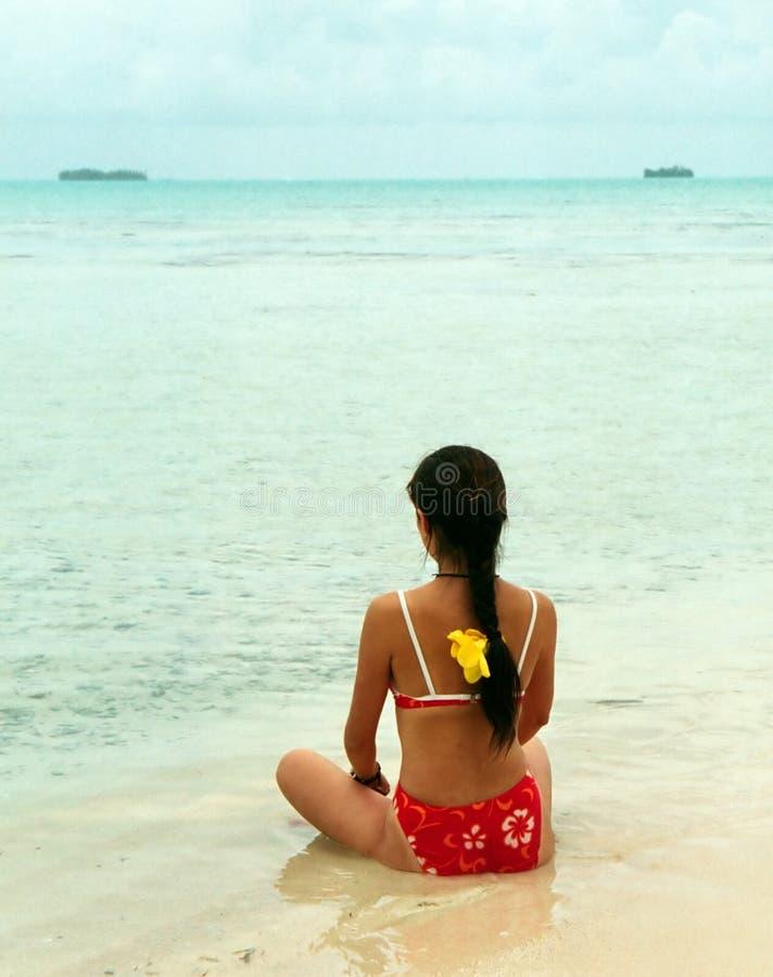 Download Дзэн стоковое изображение. изображение насчитывающей полинезия - 493183
