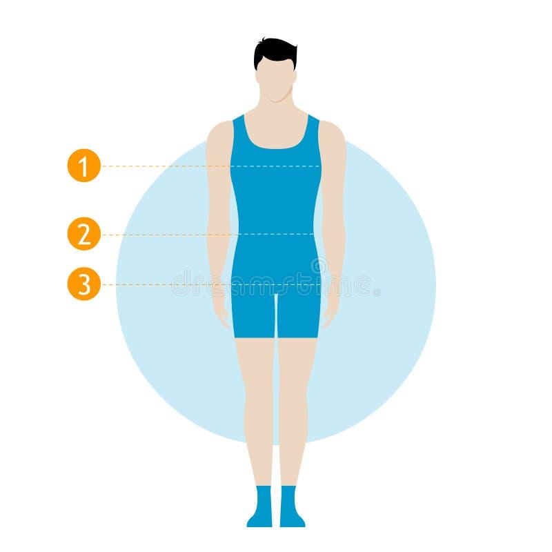 Диаграмма измерения мужского тела Диаграмма парня, модель в нижнем белье, swimwear Шаблон для шить, фитнес, разрабатывает, здоров иллюстрация штока